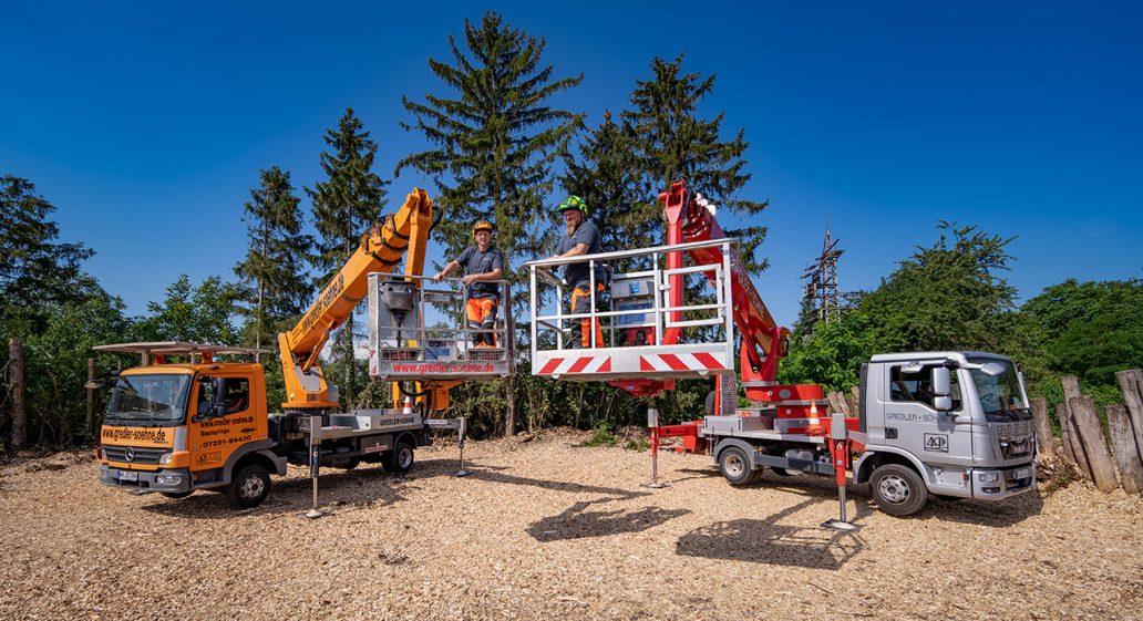 Baumpflege und Kronenschnitt mit Hubsteiger